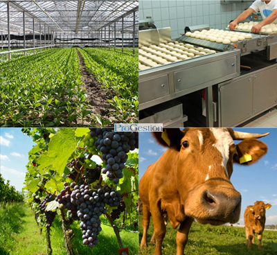 Research and development (R&D/SR&ED) in agriculture and Agri-food